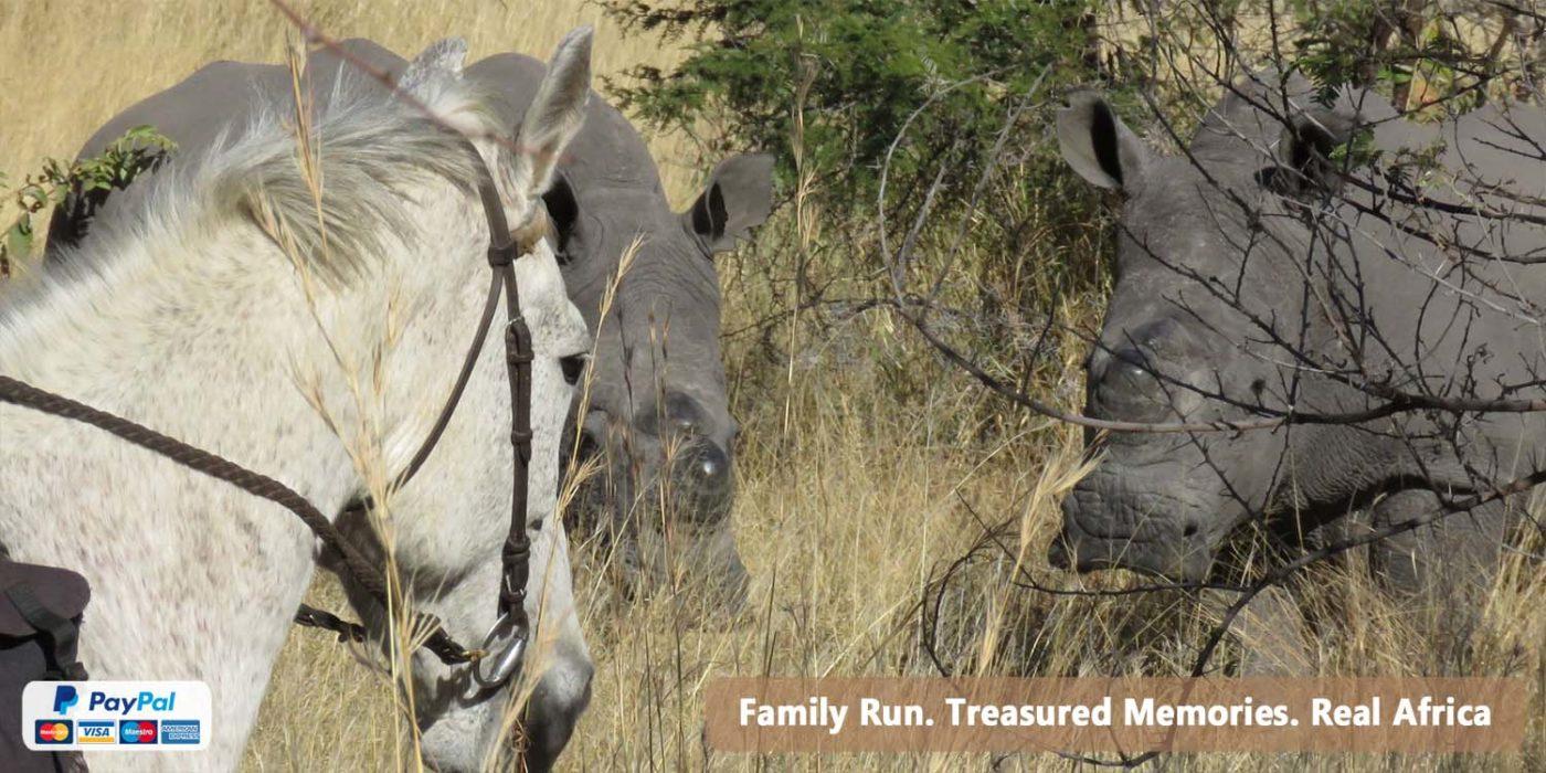 Ride Zimbabwe Horse Safaris